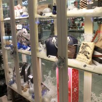 RBC Avion Holiday Boutique coquitlam Centre
