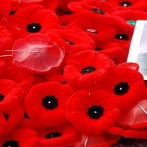 Remembrance Day - Poppies_by_Benoit_Aubry_of_Ottawa