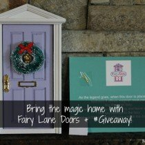 Fairy Lane Doors