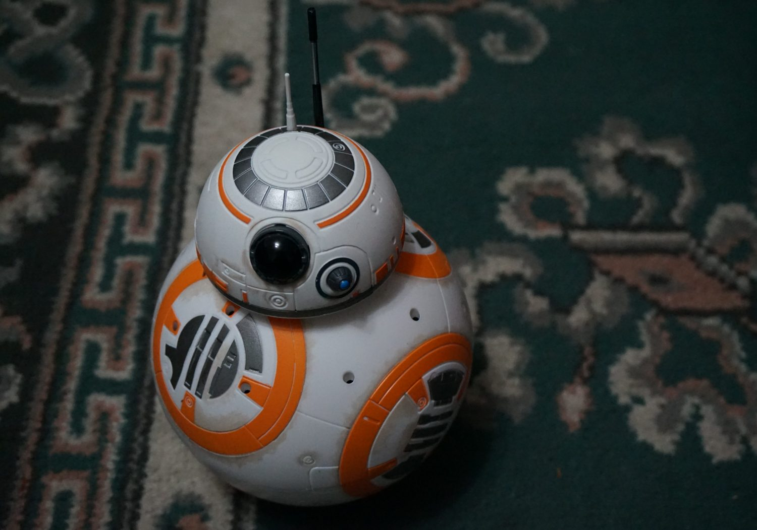 BB-8 on carpet
