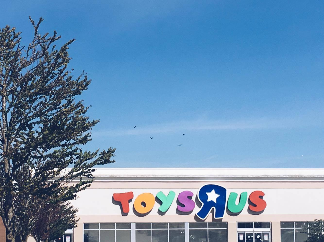"Toys""R""Us Langley Opening"