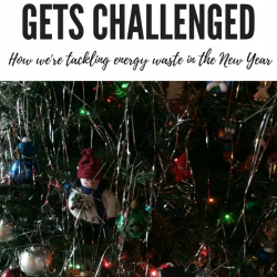 When Your Challenge is Challenged. Sharing how we're tackling energy waste in 2018 with Team Power Smart #EcoFriendly #Energy #GreenLiving #Challenge #Frugalliving