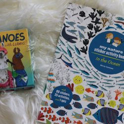 Llamanoes & In The Ocean fun with Raincoast Books + #Giveaway #PlayTestShare