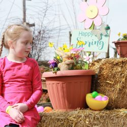 Spring Adventures at Taves Family Farm