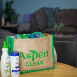 AspenClean - The Day Someone Else Cleaned My House (& it was amazing!)