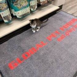 Join us for the Global Pet Foods 2020 Grand Opening! + #GIVEAWAY!